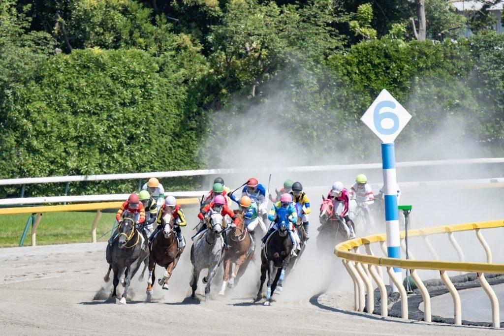 競馬 レース 東京 場