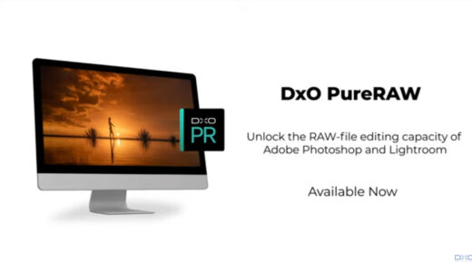 DxO PureRAWとLightroomのノイズ処理能力の比較をしてDxO PureRAW導入を決めた話